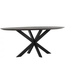 Esstisch Altholz, Esstisch schwarz, Esstisch Industriedesign, ovaler Konferenztisch, recyceltes Teakholz, Breite 200 cm