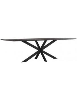 Esstisch Altholz, Esstisch schwarz, Esstisch Industriedesign, Konferenztisch, recyceltes Teakholz, Breite 260 cm